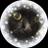 記事番号:62958/アイテムID:2019024のツイッターのプロフィール画像