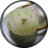 記事番号:107818/アイテムID:3413608のツイッターのプロフィール画像
